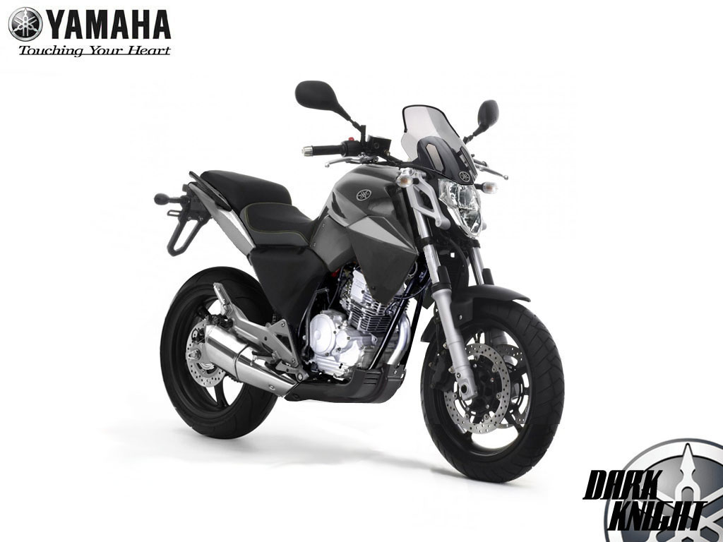 Yamaha Scorpio The Scrambler